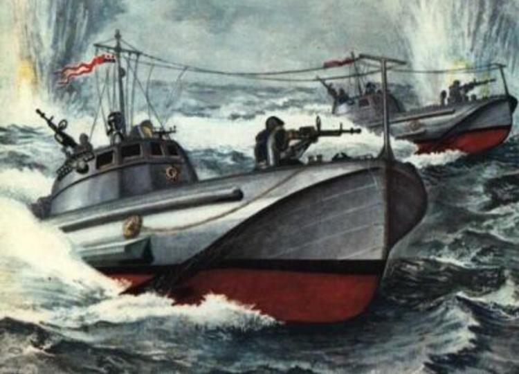 Лидер торпедных катеров —  проект Г-6